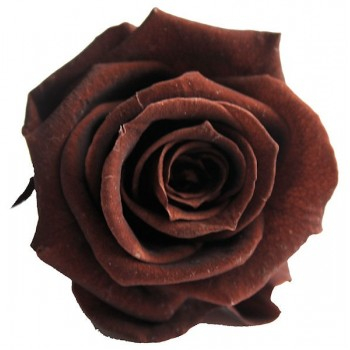 Preserved Chocolate Rose Heads mix well with Realistic Fake Flowers.