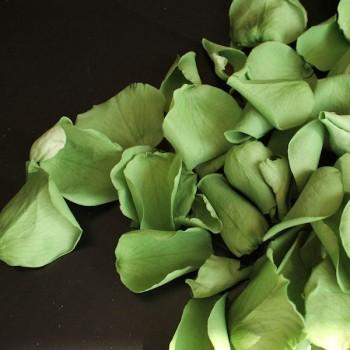 Biodegradable Green Mini Rose Petal Confetti
