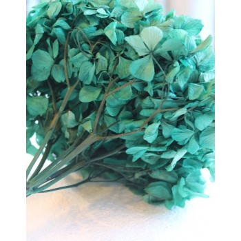 Emerald Green Preserved Hydrangea Flower Heads for Florists