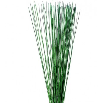 Preserved Green Mash Reed