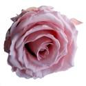 Pastel Pink Rose Heads