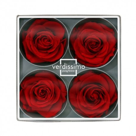 Preserved Roses - Red Supers, Set of 4 Heads