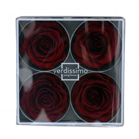 Preserved Roses - Burgundy Supers, set of 4