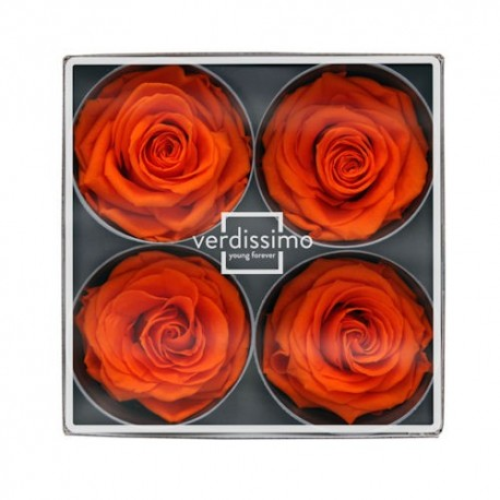Preserved Rose Head - Orange Super Rose Heads, Set of 4