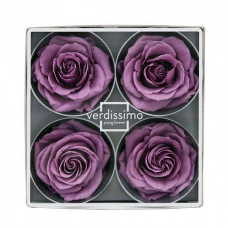 Preserved Rose Head in Lilac, Super Size, Set of 4 Heads