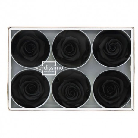 Preserved Rose Heads in Black - Size Standards, Set of 6 Rose Heads