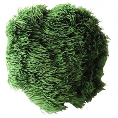 Preserved Flowers - Vert Green Ball head, set of 4