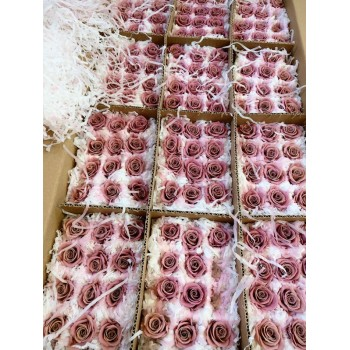 Mini Cranberry rose heads - Bulk