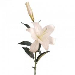 Casablanca Lilly - 12 stems, 88cm