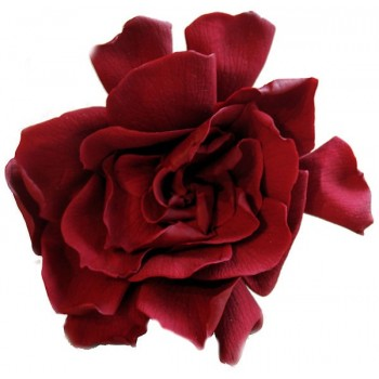 Preserved Burgundy Gardenia Flower Heads, The Most Realistic Artificial Flowers Available