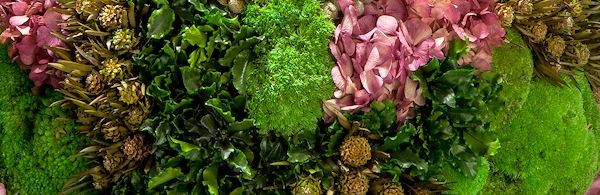 Create your own Preserved Moss Art and Incorporate Preserved Flowers and Foliage